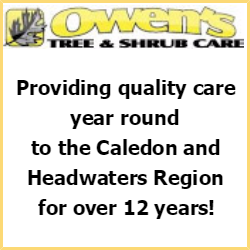 Owen's Tree and Shrub Care